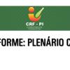 Informe: Plenário CRF-PI